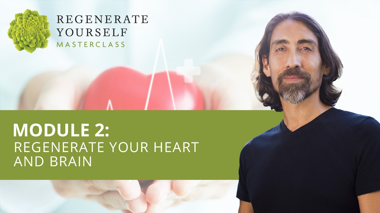 : Regenerate Your Heart and Brain