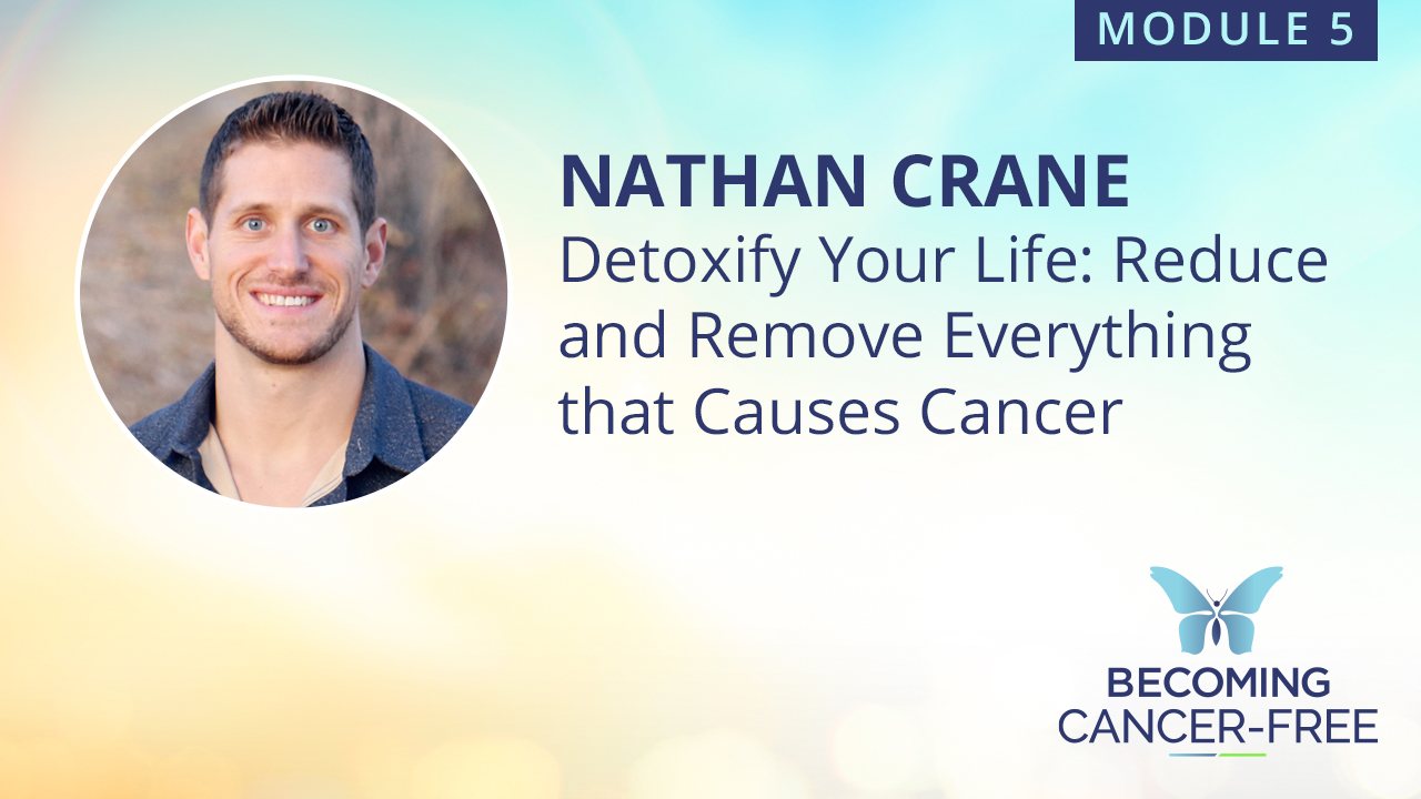 Detoxify Your Life: Reduce and Remove Everything that Causes Cancer
