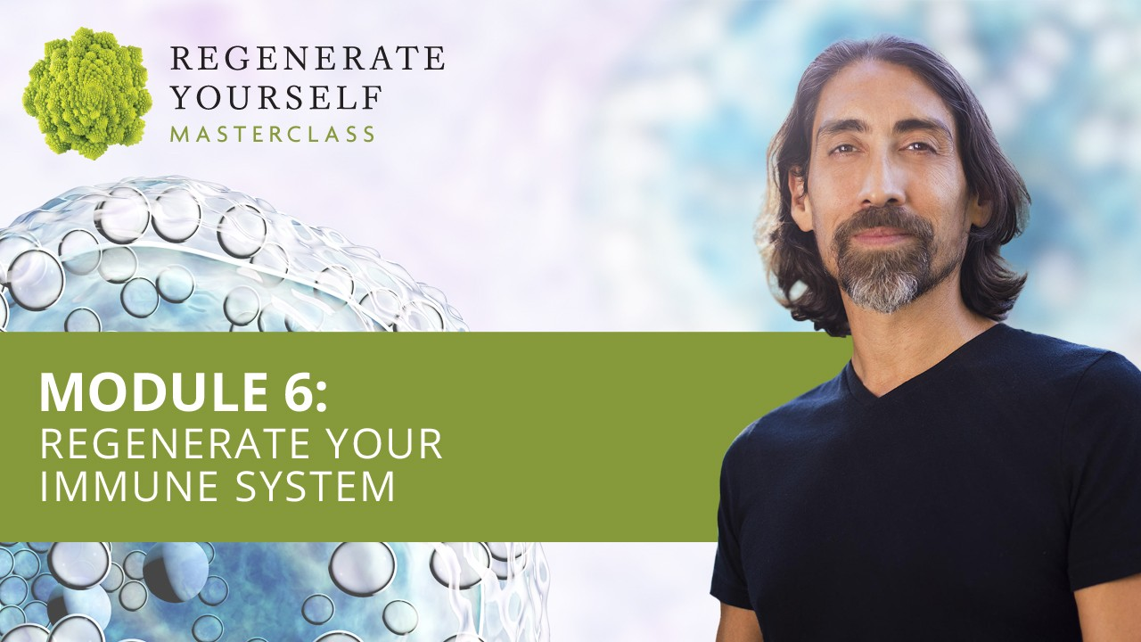 : Regenerate Your Immune System