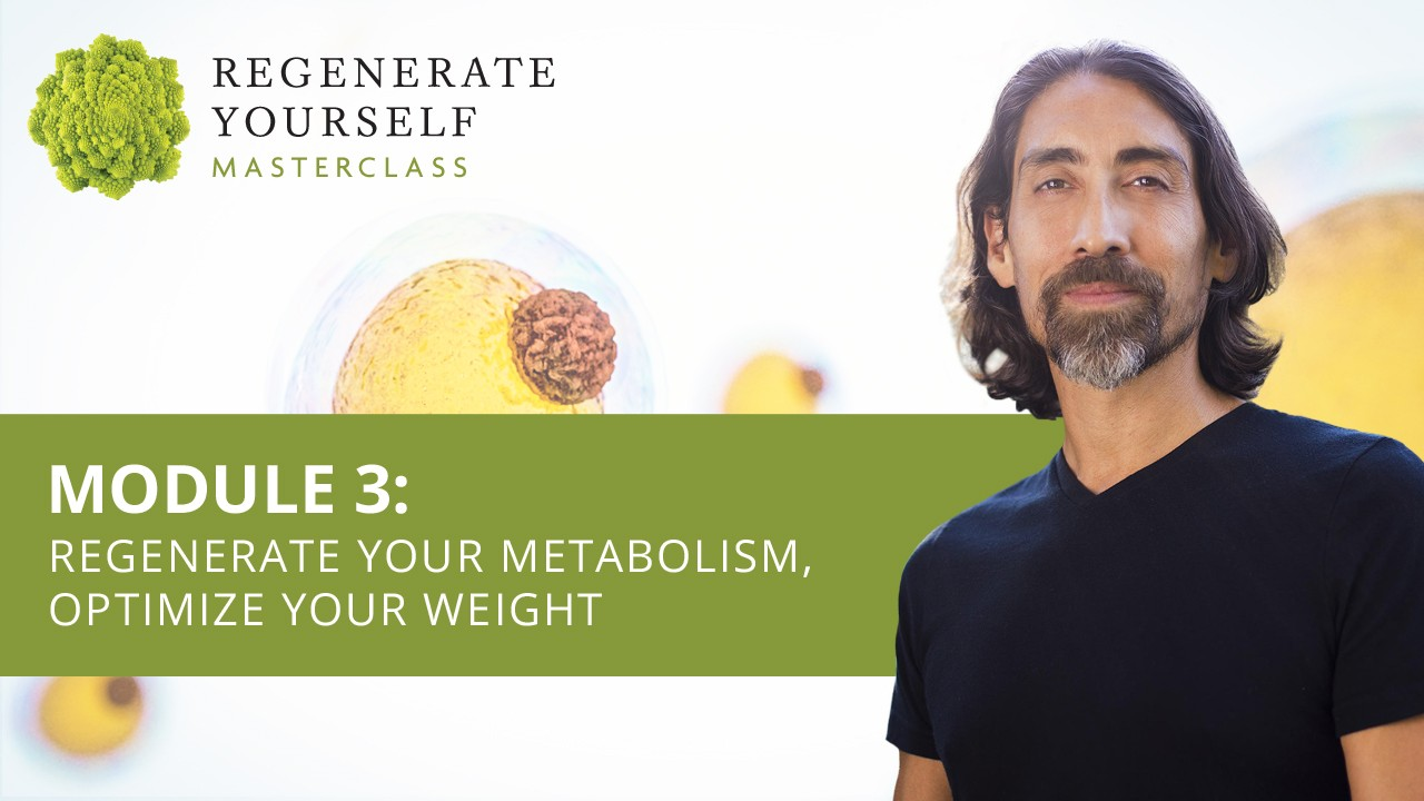 : Regenerate Your Metabolism, Optimize Your Weight