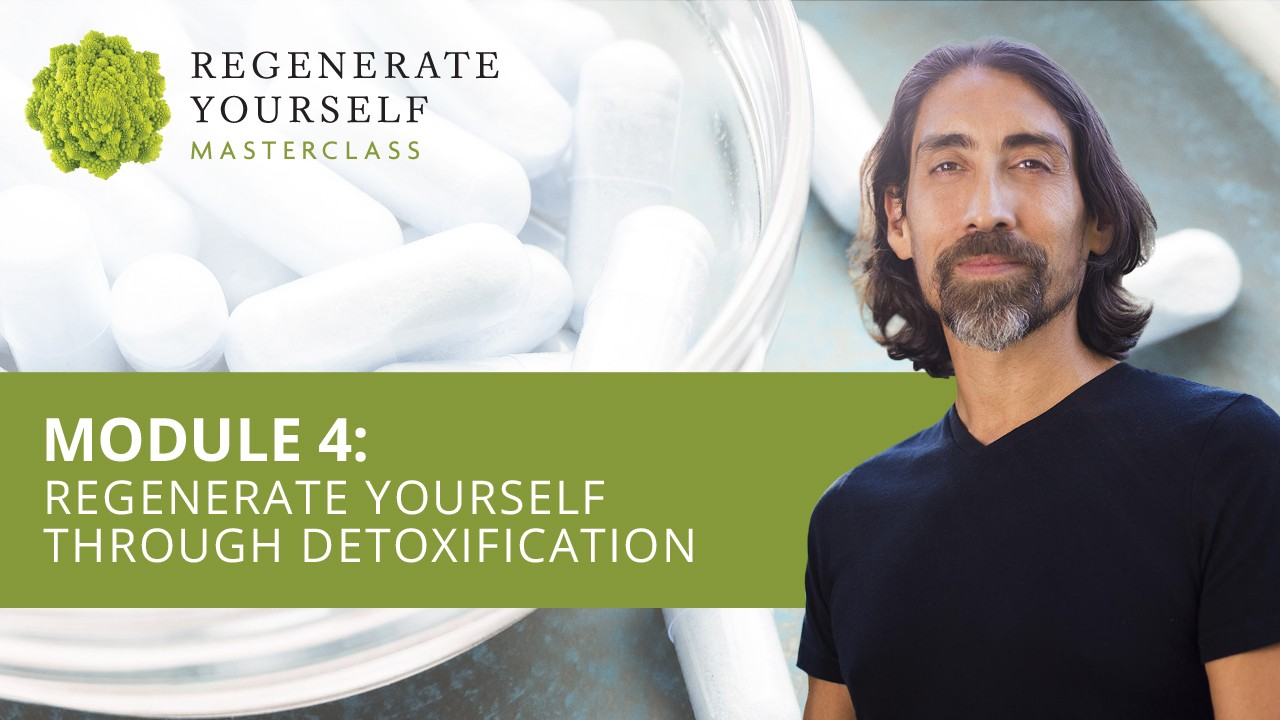 : Regenerate Yourself Through Detoxification