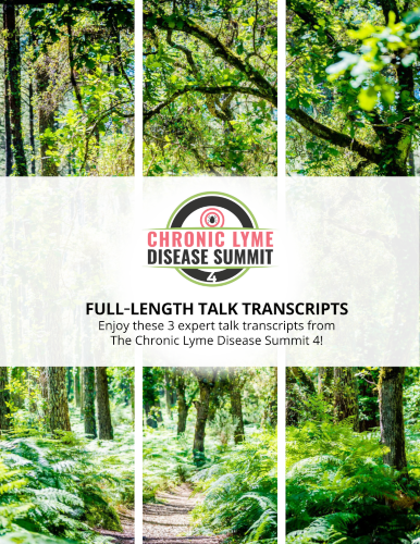 3 Interview Transcripts from The Chronic Lyme Disease Summit 4