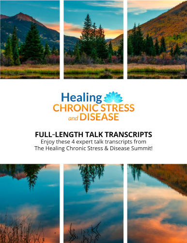 4 Interview Transcripts from The Healing Chronic Stress and Disease Summit