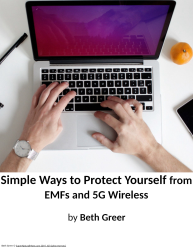 How to Protect Yourself from EMFs and 5G Cellular Wireless eBook