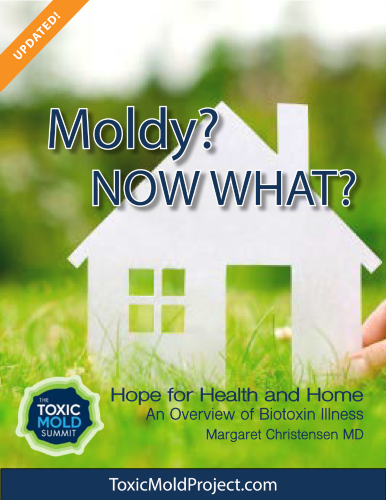 Moldy? Now What? eBook