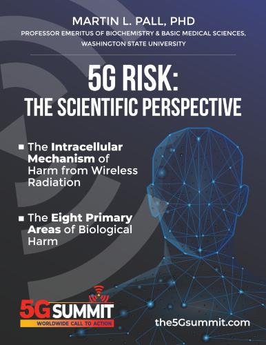 5G Risk: The Scientific Perspective eBook