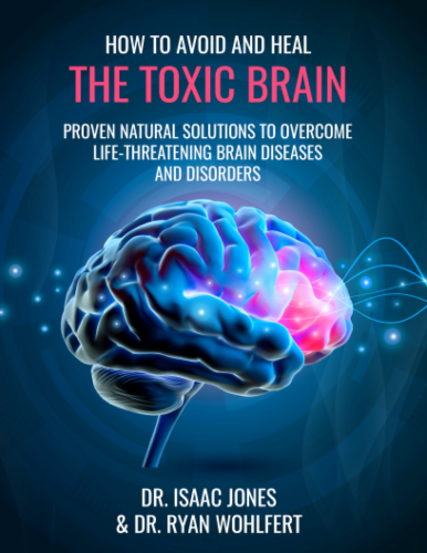 How to Avoid and Heal the Toxic Brain eBook